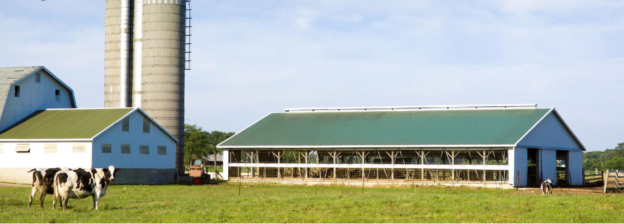 пенополиуретан в сельском хозяйстве